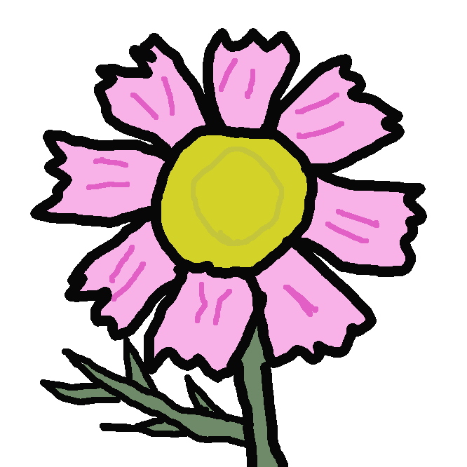 【Cosmos】キク科の一年草。高さ1.5~2メートル。葉は細かく羽状に裂ける。秋、白色や紅色の花を開く。メキシコの原産で、観賞用。アキザクラ(秋桜)。
