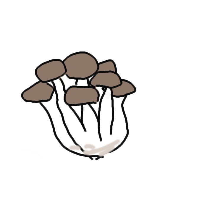 食用キノコ。普通、栽培されたアナタケ目サルノコシカケ科ヒラタケ属のキノコ、ヒラタケをいう。ホンシメジとして売られているものもハラタケ目キシメジ科のキノコのブナシメジであることが多い。