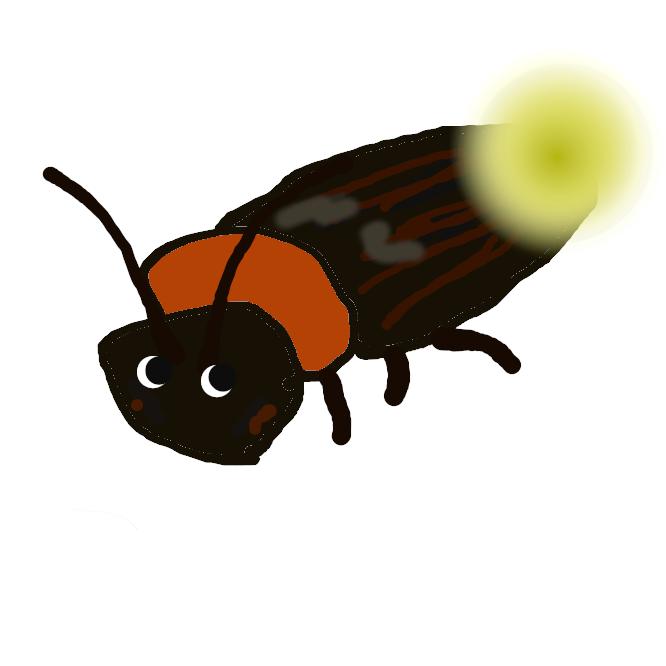 【蛍】甲虫目ホタル科の昆虫の総称。ゲンジボタル・ヘイケボタル・ヒメボタルなど。一般に体は楕円形で軟弱、全体に黒色で胸の部分が赤い。腹部に発光器をもち、暗い所では青白い光を放つことで知られるが、ほとんど光らない種も多い。幼虫は水生のものと陸生のものとがある。