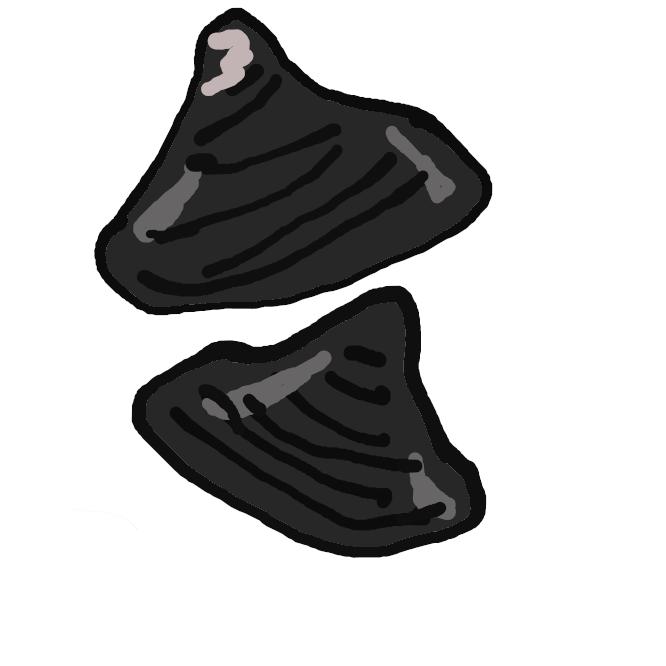 【蜆】シジミ科の二枚貝の総称。貝殻は三角形で、殻表は多くは黒色で輪脈がある。淡水にすむマシジミ、海水のまじる河口近くにすむヤマトシジミ、琵琶湖水系にすむセタシジミなどがある。食用。