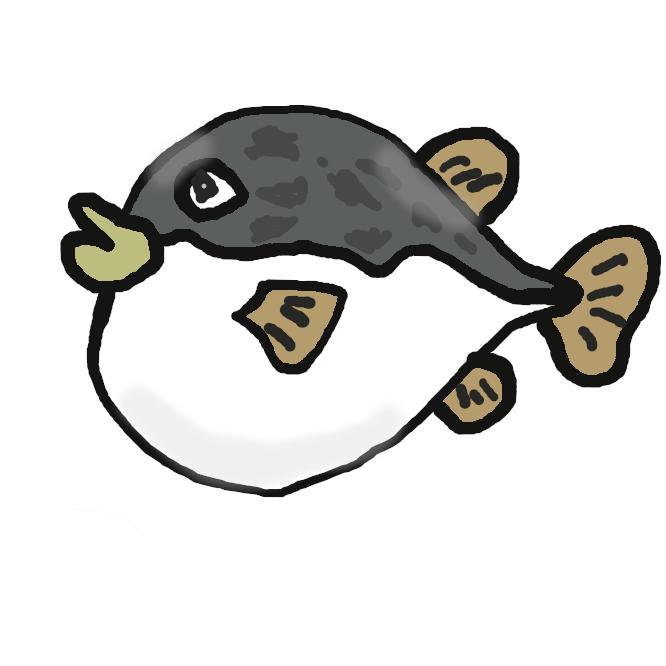 【河豚】フグ目フグ科の魚の総称。海産のものが多い。体はふつう太っていて腹びれがなく、体表にとげ状のうろこをもつものや、うろこのないものがある。口は小さく、歯は癒合してくちばし状を呈し、よく水を飲んで体を膨らませる。多くは内臓に毒をもつ。肉は淡白で美味。トラフグ・マフグ・キタマクラなど、日本近海に約40種が知られる。