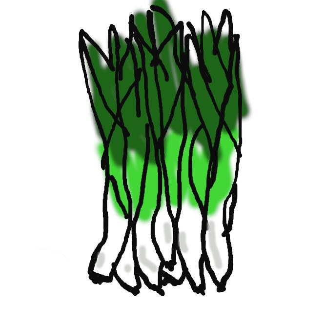 【分葱】ネギの変種。小形で葉も細い。シベリアの原産。栽培され、鱗茎を株分けして植え付ける。ぬたなどにする。ふゆねぎ。