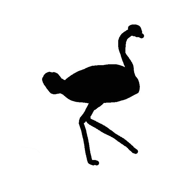 【駝鳥】ダチョウ目ダチョウ科の鳥。現生の鳥類では最大で、雄は頭高約2.5メートル、体重約135キロ。頭は小さく、くびが細長い。足の指は2本。脚が強大で走るのが速いが、翼が小さく飛べない。アフリカのサバンナに分布。