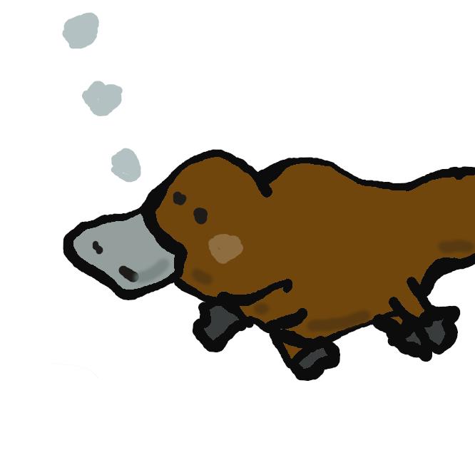 【鴨嘴】単孔目カモノハシ科の原始的な哺乳類。体長約45センチ、尾長約15センチ。鴨に似たくちばしをもち、体は太く黒褐色、四肢は短く、足に水かきが発達。尾は扁平。河川の堤に長い穴を掘ってすみ、卵を産み、孵化(ふか)した子は乳で育てる。オーストラリア南東部やタスマニア島に生息。