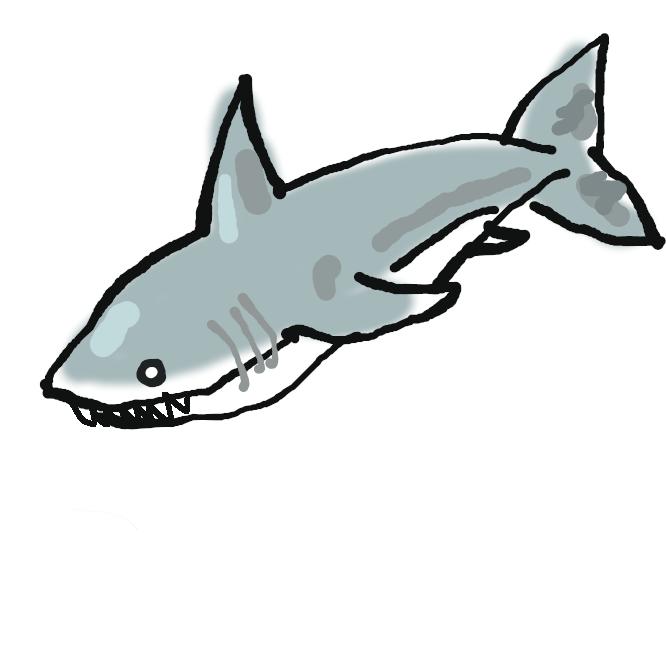 【鮫】サメ目の軟骨魚の総称。体は細長く、背びれは通常2基あり、尾びれは上葉が長い。口は頭の下面にあり、えらあなは体側に5~7対並ぶ。歯は常に新しいものが生えかわる。動物食。卵胎生が多いが、卵生・胎生のものもある。大半は海産で、現生種は250種、日本近海にいるのはウバザメ・オナガザメ・ツノザメ・ノコギリザメなど150種。肉は練り製品の原料に、ひれは中華料理に用いられる。ふか。わに。
