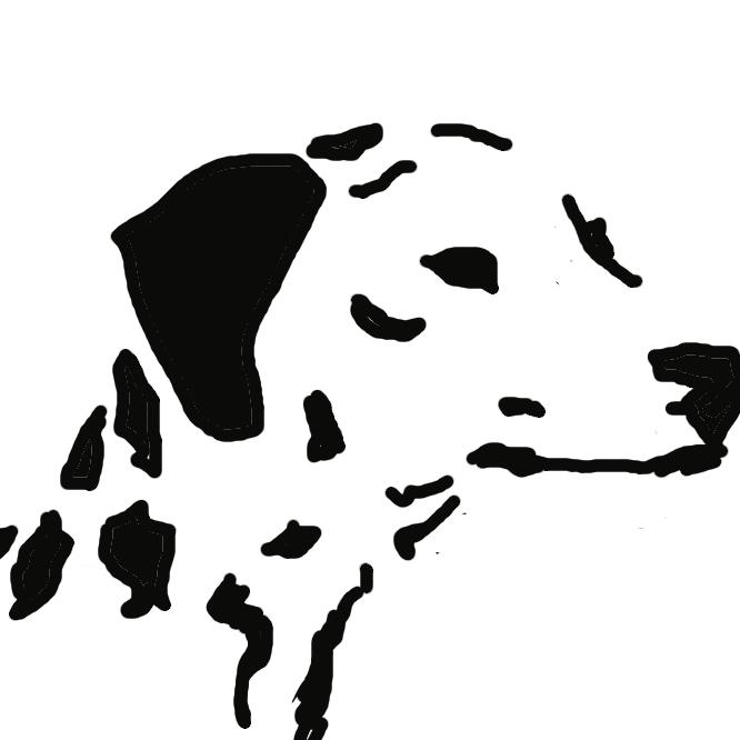 【ダルメシアン:Dalmatian】犬の一品種。クロアチアのダルマチア地方の原産。体形はポインターに似て、白色の地に黒などの丸い斑点がある。