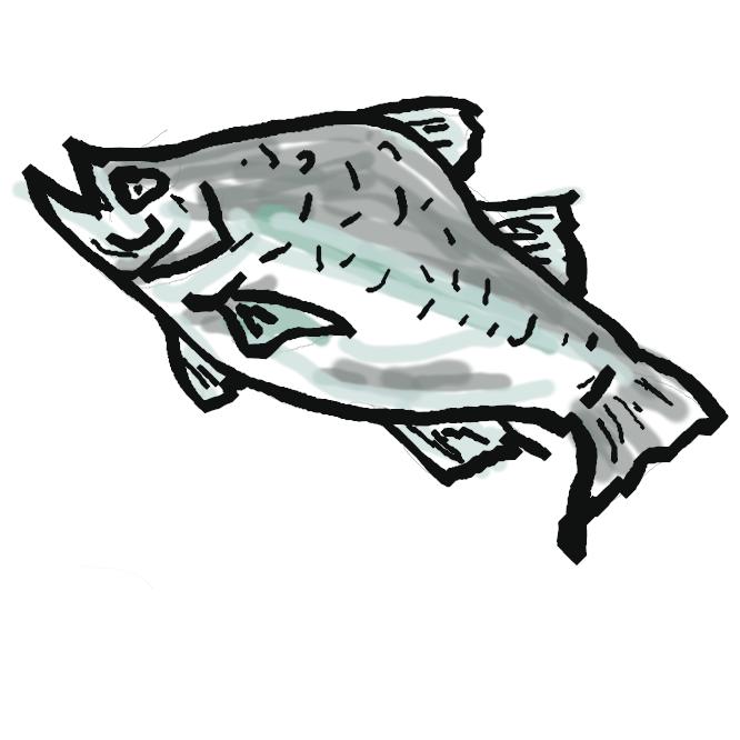 【鱸】スズキ目スズキ科の海水魚。全長約90センチ。体は細長く、側扁する。背側は灰青色で、腹側は銀白色。幼魚には背部と背びれとに小黒点がある。北海道以南から東シナ海に産し、夏季には河川に入る。出世魚の一で、セイゴ・フッコ・スズキと呼び名が変わる。美味で、夏秋が旬。