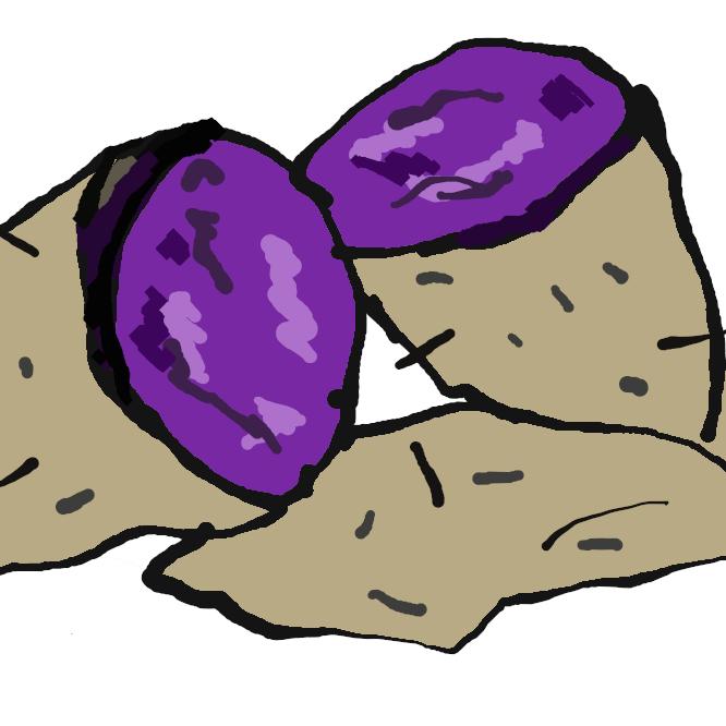 【紫芋】さつまいもの一種です。 中が紫色をしているため「紫芋」と呼ばれています。 鮮やかな紫色の正体は「アントシアニン」という成分で、ワインやブルーベリーなどにも多く含まれています。