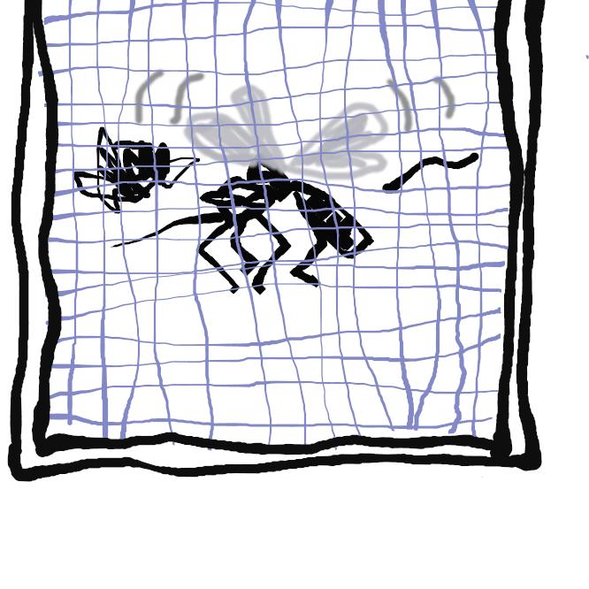 【網戸】虫を侵入させずに涼をとるために窓や出入り口に取り付ける、網を張った戸。