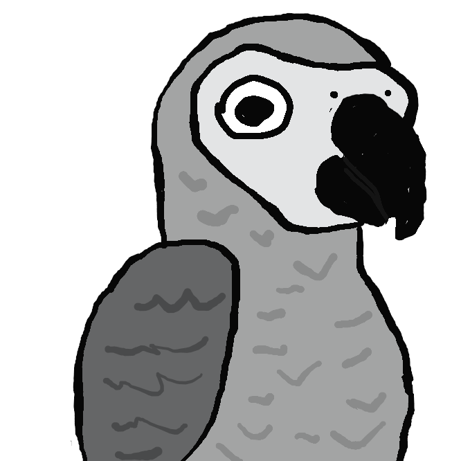 【Gray parrot】オウム目インコ科の鳥類である。体の大半は淡灰色の縁取りのある灰色の羽毛に包まれている。風切り羽根は黒色。顔面部は羽毛がなく白い。嘴は黒、白~淡黄色の虹彩。赤い尾羽を持つ。主食は種子や果実。原産地はアフリカ西海岸の森林地帯。群集性がある。知能が高く人の言葉を良く覚える種として名高く、飼い鳥として人気がある。特に外国では、尾羽の赤い色が背中にまで達したヨウムを「王鳥」と呼んで珍重する。
