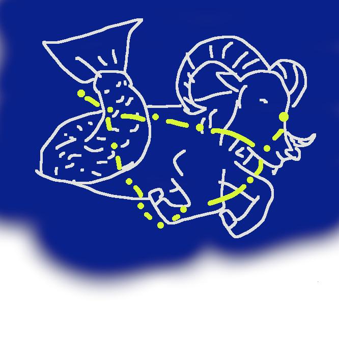 【山羊座:Capricornus】黄道十二星座の一。射手(いて)座の東にあり、三等星・四等星が逆三角形に並ぶ。9月下旬の午後8時ごろ南中。かつてはここに冬至点があった。