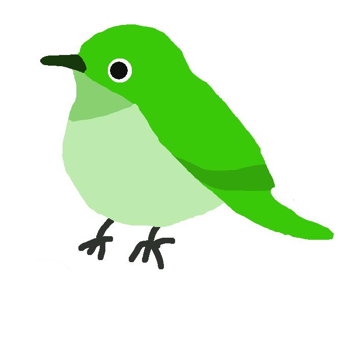 【目白】スズメ目メジロ科の鳥。全長12センチくらい。背面が黄緑色、腹面が淡黄色で、目の周りが白い。虫や果実を食べるが、舌の先がブラシ状になっていてツバキなどの花蜜も吸う。東アジアに分布。日本では山林にすみ、冬は小さな群れをつくる。鳴き声を楽しむためによく飼われた。