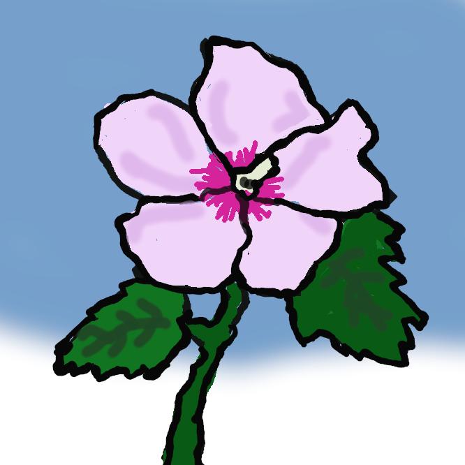 アオイ科の落葉低木。高さ約3メートル。葉はほぼ卵形で、縁に粗いぎざぎざがある。夏から秋にかけて、紅紫色の5弁花が朝開き、夕方にしぼみ、次々と咲き続ける。中国・インドの原産。庭木などにし、花が白色や八重咲きなどの品種もある。はちす。きはちす。ゆうかげぐさ。あさがお。もくげ。