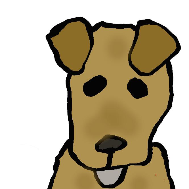 アイルランド原産のテリア犬。