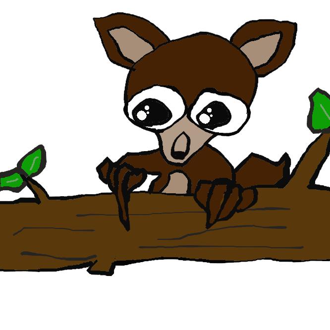 アイアイ科の原始的な猿。頭胴長40センチくらいで、尾が長い。長い指は鉤爪(かぎづめ)をもち、樹皮下の昆虫を掘り出して食う。マダガスカル島にのみ生息。指猿(ゆびざる)。