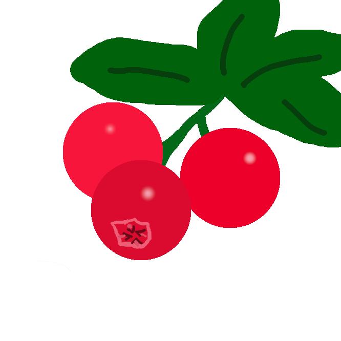 【苔桃】ツツジ科の常緑小低木。高山に生え、高さ約10センチ。茎の下部は地をはい、葉は長楕円形で密につく。初夏、紅色がかった釣鐘形の花をつける。実は熟すと赤くなり、生食のほか塩漬けや果実酒をつくるのに用いる。