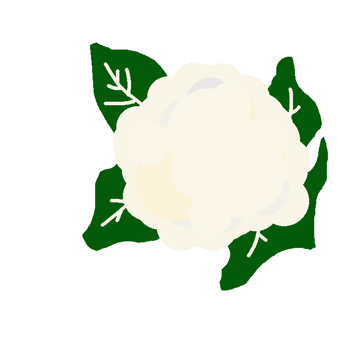 ヨーロッパ産のキャベツから改良された野菜。太く短い茎に長楕円形の葉が放射状につき、結球しない。春、花が咲く前に、白いつぼみの球状の集まりを収穫し、食用にする。日本には明治初年に渡来し、昭和30年(1955)ころから普及。花椰菜(はなやさい)。花キャベツ。