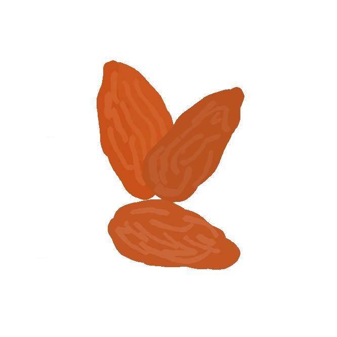 【almond】バラ科の落葉高木。葉は長楕円形。果実は桃に似るが、扁平で、種子の苦いもの(苦扁桃(くへんとう))と甘いものとがある。苦扁桃油はせきどめに、甘いものは菓子や料理に使う。アジア西部の原産。扁桃。巴旦杏(はたんきょう)。アマンド。アメンドウ。