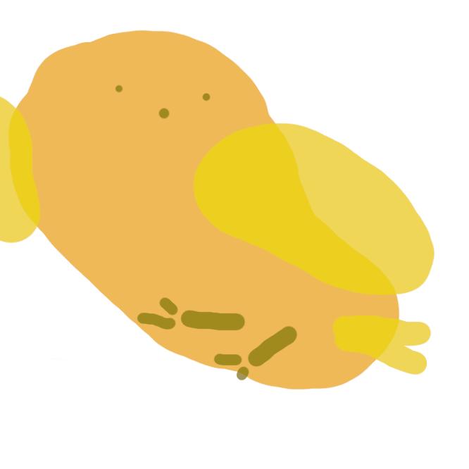 【雛】卵からかえって間のない鳥。特に、鶏のひな。ひよっこ。
