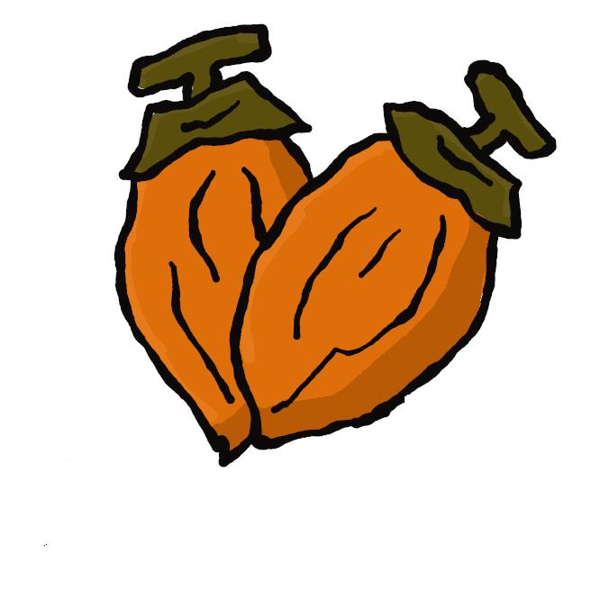 【あんぽ柿】干し柿の一種で、果肉が完全に乾ききらない生干しの状態のもの。大粒で柔らかく甘い。