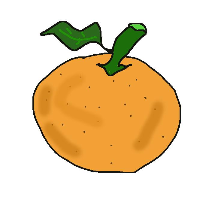 インド・ヒマラヤ地方が原産のミカン科ミカン属の果物である。ビターオレンジ、サワーオレンジとも呼ばれる。橙は、香り高いが酸味と苦味が非常に強く、そのまま食すのには適さない。そのため、ポン酢やマーマレードに加工されたり、お正月に飾る鏡餅やしめ縄中央の飾りとして利用されたりする。