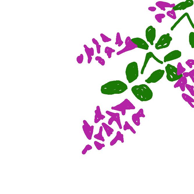【宮城野萩】マメ科の落葉低木。東北地方の山野に自生し、高さ約1.5メートル。枝先は垂れ、葉は楕円形の3枚の小葉からなる複葉。9月ごろ、紅紫色の蝶形の花が咲く。庭木にする。なつはぎ。
