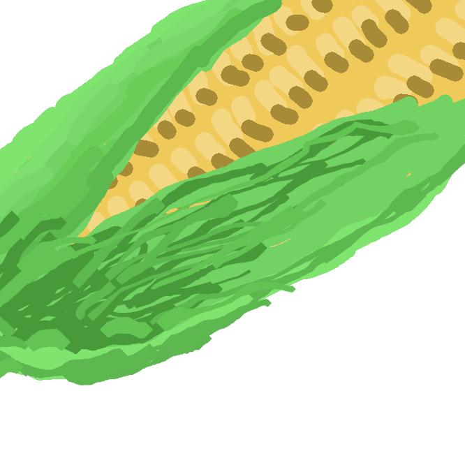 【唐黍】トウモロコシの別名。