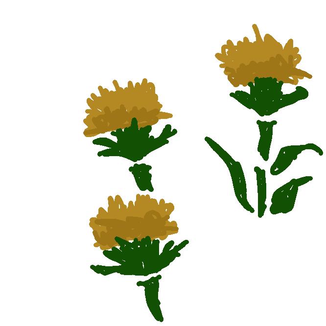 【紅花】キク科の越年草。高さ約1メートル。葉は堅くてぎざぎざがあり、互生する。夏、アザミに似た頭状花が咲き、鮮黄色から赤色に変わる。花を乾かしたものを紅花(こうか)といい婦人薬とし、また口紅や染料の紅を作り、種子からは食用油をとる。エジプトの原産で、日本では山形が主産地。すえつむはな。くれのあい。べにのはな。サフラワー。