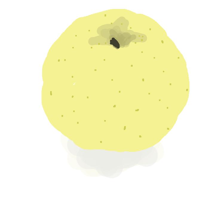 岩手県園芸試験場(北上市)において、1983(昭和58)年に「王林」に「はつあき」を交配し、できた種子を翌年まき、その実生を高接ぎしたものの中から選抜育成された黄色いリンゴです。1991(平成3)年に登録出願、1994(平成6)年に品種登録されています。出願時の名称は「岩手1号」となっていました。