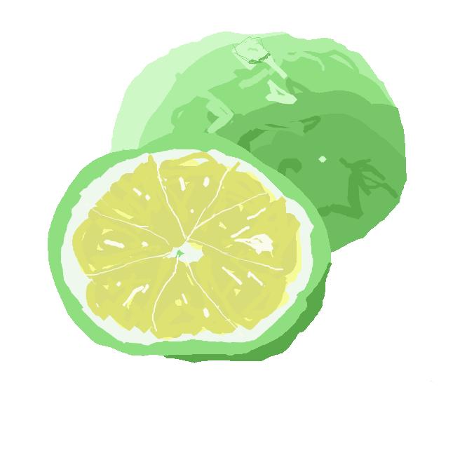 【酢橘】ミカン科の常緑低木。ユズに似て果実は小さく、扁球形。果肉は酸味が強く、特有の香気がある。食酢用に徳島県で栽培され、まだ緑色のときに収穫する。