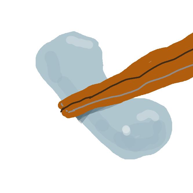 【箸置き】食卓に箸を置くとき、箸先をのせるもの。