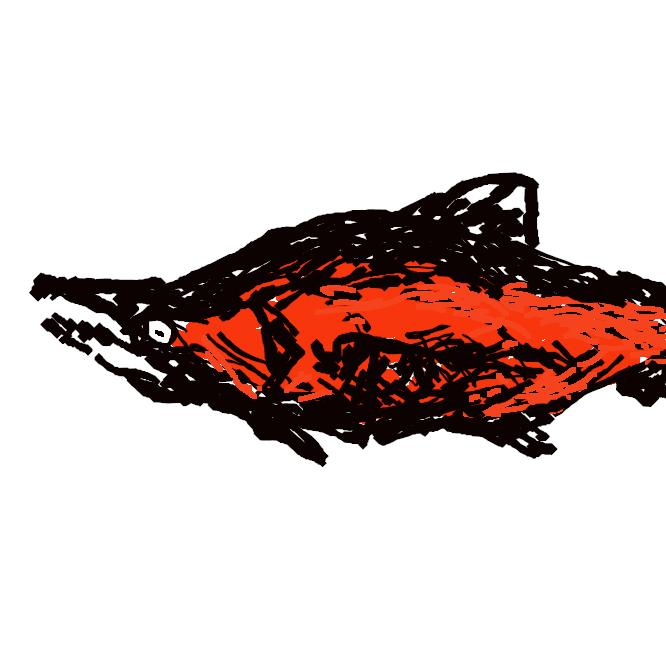 【紅鮭】サケ科の海水魚。体色は背側と各ひれが青黒色、腹側が銀白色。外洋を回遊し、秋、繁殖のため、上流に湖のある川を上る。このとき雌雄とも頭と尾びれのほかは鮮紅色の婚姻色を示す。北太平洋に広く分布。この陸封型がヒメマス。肉は紅色で美味。べにます。べに。