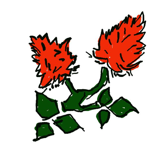 原産をインドとする沖縄が北限のマメ科喬木落葉樹。3〜5月に独特の枝ぶりに、深紅色の燃え立つような花を咲かせる。南国沖縄を象徴し、観光資源として大きな効果があること、また幹は漆器の材料として用いられ経済的価値も高いという理由で、昭和47年に県の花として制定された。