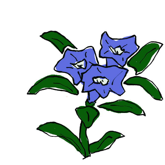 リンドウ科の多年草。山野に生え、葉は先のとがった楕円形で3本の脈が目立ち、対生する。秋、青紫色の鐘状の花を数個上向きに開く。根・根茎に苦味成分を含み、漢方では干したものを竜胆(りゅうたん)といい薬用。同科にはハルリンドウ・ミヤマリンドウやセンブリなども含まれる。