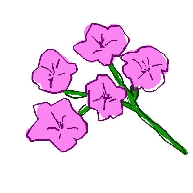 【八潮躑躅】ツツジ科の落葉低木であるアカヤシオ、シロヤシオなどの総称。本州から四国にかけての深山に自生。細かく枝分かれした先に葉を5枚ずつ輪生状につける。初夏、漏斗形で先の5裂した花が開く。