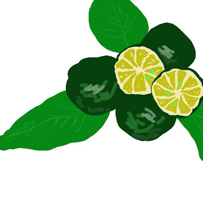 ミカン科の常緑低木。春、白い小花をつける。実は小粒でミカンに似る。未熟な実は搾って酸味料に、熟した実はジュースなどに加工される。沖縄に自生、栽培もされる。平実(ひらみ)レモン。