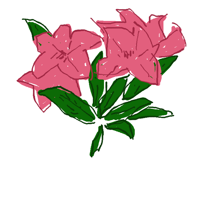 【蓮華躑躅】ツツジ科の落葉低木。高原に群生。葉は倒披針形。4、5月ごろ葉とともに、朱色の漏斗状の花が咲く。花びらは先が五つに裂ける。花がかば色や黄色のものもあり、庭木にする。